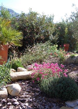 Faire des semis pr coces sous abris outillage bricolage - Semer du persil en jardiniere ...