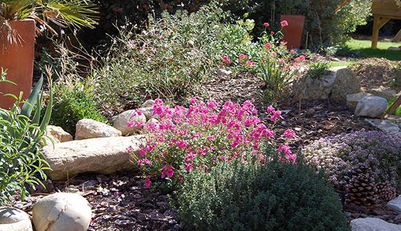 Profitez de l'entretien du jardin pour semer et planter vos fines herbes