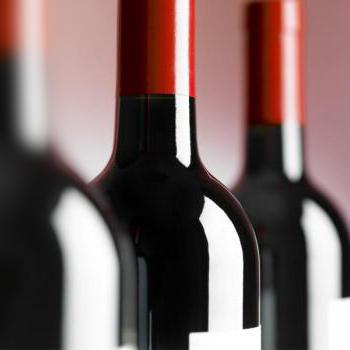 cave à vin pour le vieillissement du vin