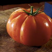 tomates farcies au four cyclonique